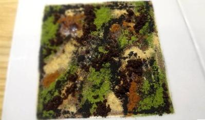 massimo-bottura-chef-interview-camouflage-credits-cibando
